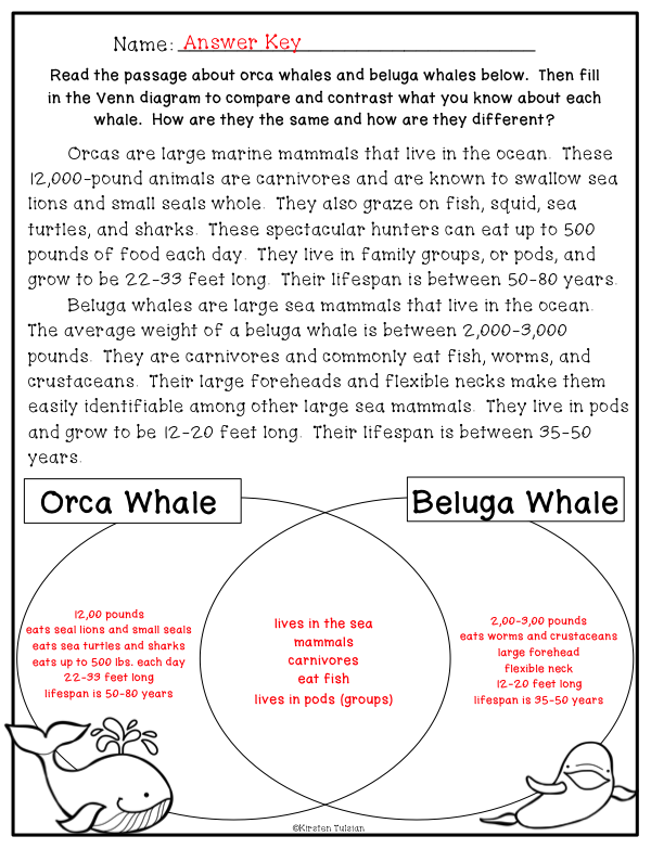 Compare and Contrast Printables and Reading Passages