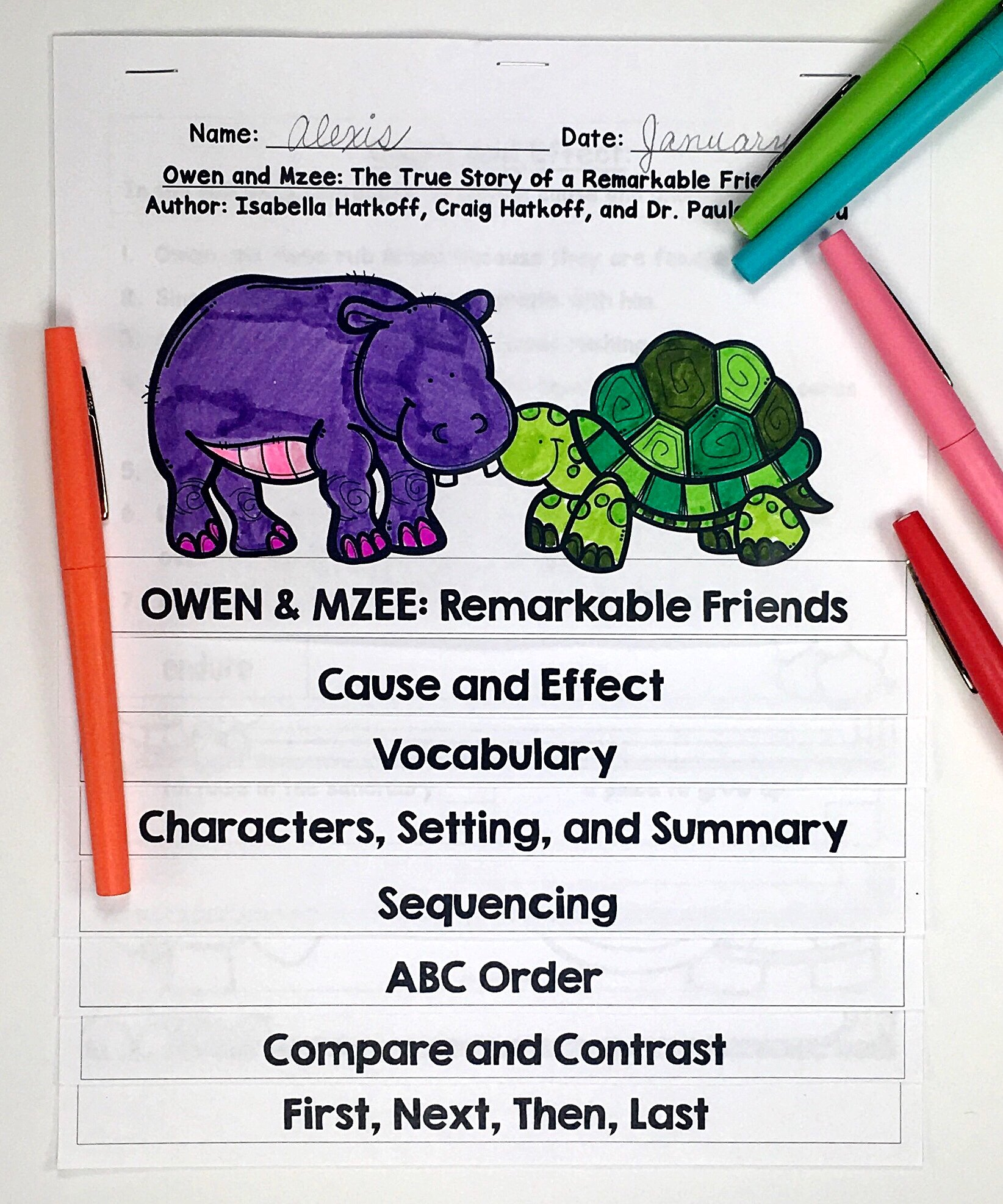 Owen and Mzee Activities